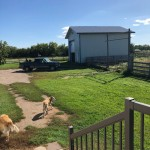 102 Acres with House and Outbuildings - Wilkie, SK - E - L