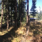 Farm land in Clearwater BC - 69 Acres - $599,000