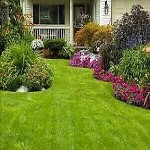 Landscaping Company For Sale